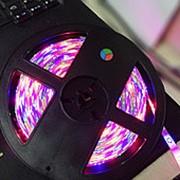 RGB Светодиодная лента с пультом 5м. фото