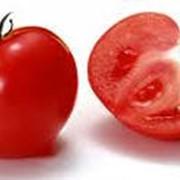 Переработка овощей и фруктов. Томатная паста от производителя фото