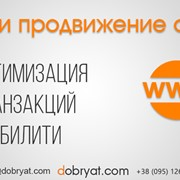 Продвижение интернет магазина в ТОП фото