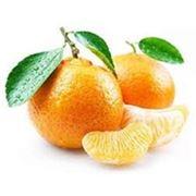 Концентраты фруктовые фото