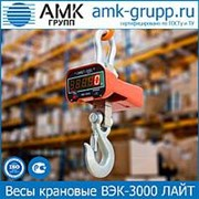 Весы крановые ВЭК-3000 (3 т) ЛАЙТ фото