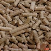 Производство топливных гранул из различных биомасс. фото