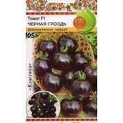 Томат Черная гроздь F1 (10 шт) фото