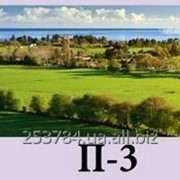 Картина панорамная П-3, 30х90, 30х100 фото