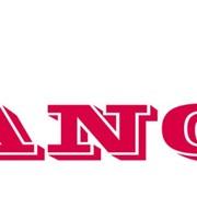 Логотип на спину (1 цвет, 30*10 см) фото