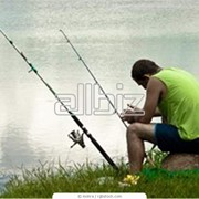 Дип для рыбалки фото