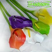 """Цветок искусственный """"Калла"""" AL45085 фото"""