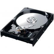 Диск жесткий HDD 1 TB SATA фото