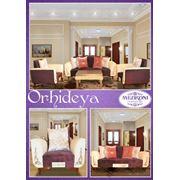 Мягкая мебель Orhideya фото
