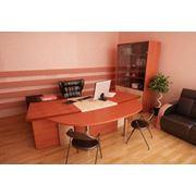 Мебель офисная корпусная фото