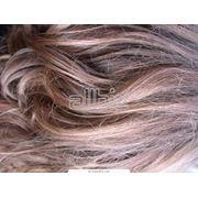 Волосы натуральные для наращивания фото