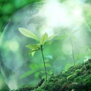 Работы по подготовке проектов мероприятий по охране окружающей среды фото