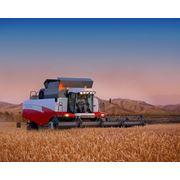 : Комбайны зерноуборочные ACROS 530 и 580 фото