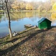 База отдыха, Апшеронск фото