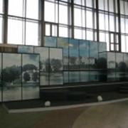 Организация международных художественных выставок фото
