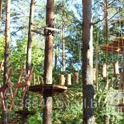 Верёвочный парк фото
