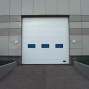 Ворота секционные промышленные фото