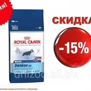 Сухой корм для щенков Royal Canin Maxi Junior 32 - 15 кг фото