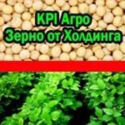 Соевый шрот без ГМО, скидки- мы всегда можем договориться! фото