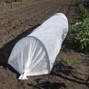 """Тепличка """"Фермер - Малая"""", плотность 50г/м.кв, длина 4м фото"""
