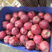 Продам Яблоки Старкримсон из Молдавии фото