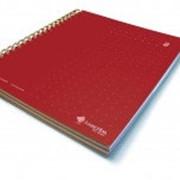 Умный блокнот Livescribe Single Subject Notebooks #2 (A4, 210 x 297 мм) Красный фото