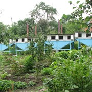 Готовые мини фермы, чертежи разных мини ферм, зоотехнический план, фильм о акселерационном кролиководстве фото