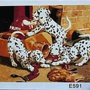 Картина по номерам 40х50 арт Е591 фото