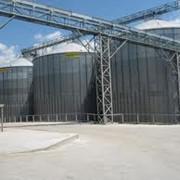 Хранение зерна на элеваторахХранение зерна на элеваторах фото