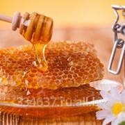 Мед фото