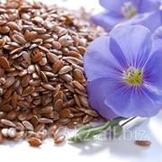 Лен масличный оптом от производителя по Низким ценам. Экспорт. Качество фото