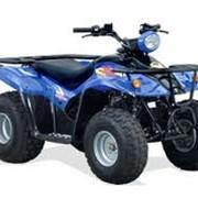 Квадроцикл Kymco MXER. фото