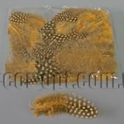 Перья охра с горохом 5-10 см ~50 шт 570400 фото