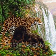 Картина по номерам Леопарды у водопада фото