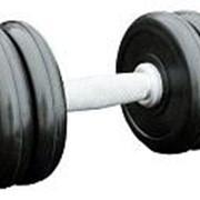 Гантель профессиональная IronKing 11 кг фото
