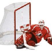 Ворота для хоккея фото
