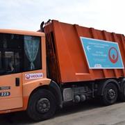 Сбор, вывоз и утилизация твердых бытовых отходов. фото