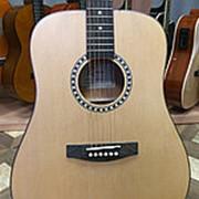 Акустическая гитара Homage Ramis RA-A05-NL фото
