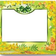 Коробка-сундучок Мимоза 340х270х75 фото
