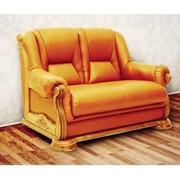 Двойное кресло Leda Viitorul, кожа фото