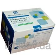 Тест-система MaxSignal CHLORAMPHENICOL TEST KIT (CAP) (определения остатков антибиотиков группы хлорамфеникол) фото