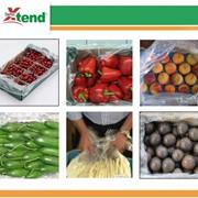 Технология максимального сохранения свежих продуктов Xtend (StePac, Израиль) фото