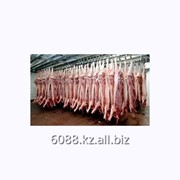Отборная свинина в промышленных объемах фото