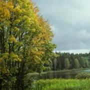 Экология. фото