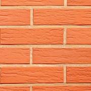 Облицовочный пустотелый кирпич Lode VECAIS JANKA красный ретро 250x85x65 фото