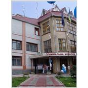 Бизнес - колледж при Европейском университете. Подготовка специалистов среднего звена на образовательно-квалификационном уровне младший специалист фото
