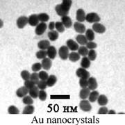 Нанопорошки - Золи благородных металлов (Au, Pt, Pd) (дисперсия нанокристаллов по размерам фото