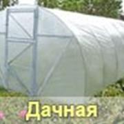 """Теплица """"Дачная - 2Д"""" под пленку фото"""