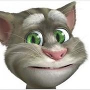 Забавная говорящая игрушка Talking Tom Cat из популярный игры для iPad фото