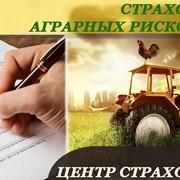 Страхование аграрных рисков фото